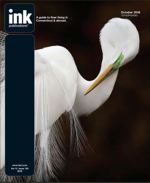 Ink Egret